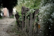 Shighisoara, cimitero