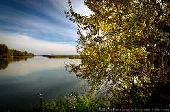 Parco Regionale del Delta del Pò (Valli di Argenta)